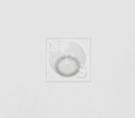 Joint de bouchon vidange NPS M129A04 d'origine